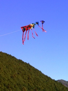 kite@tomisato.jpg