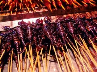 scorpion3.jpg